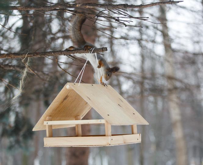 Кормушки своими руками для птиц из дерева